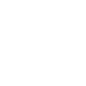 betravelwise